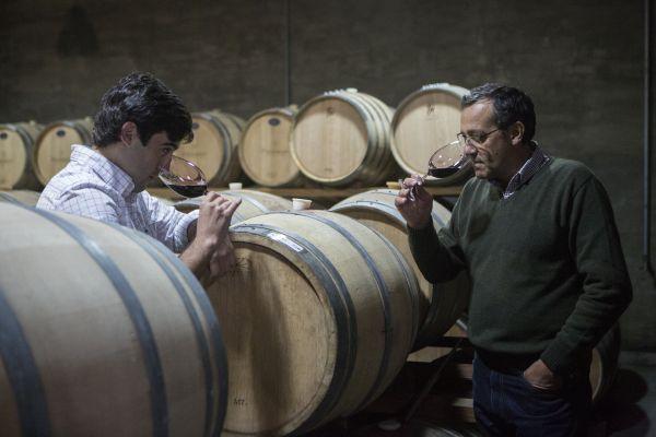 Degustación de vinos Bodega Pizzorno Uruguay